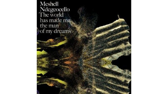 Meshell Ndegeocello: The World Has Made Me the Man of My Dreams