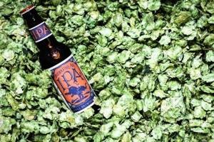 odell-hops.jpg