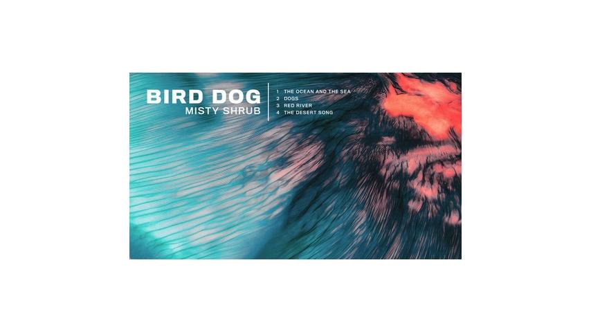 Bird Dog: <i>Misty Shrub EP</i> Review