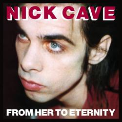 nick-cave-fhte.jpg