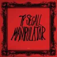ty-segall-manipulator.jpg