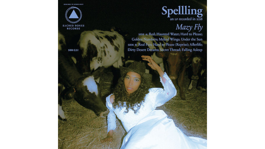 SPELLLING: <i>Mazy Fly</i> Review