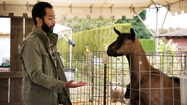 <i>Wyatt Cenac's Problem Areas</i> Gets Schooled in Season Two Trailer