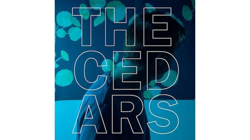 John Vanderslice: <i>The Cedars</i> Review