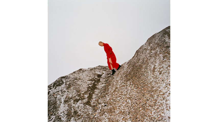 Cate Le Bon: <i>Reward</i> Review