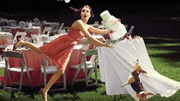 10 Must-Listen Audiobooks for Wedding Season