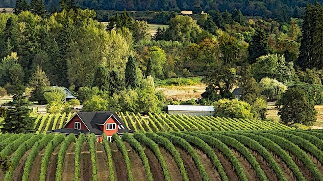 Your Guide to the Wineries of Willamette Valley