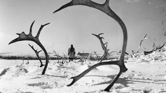 The Best Horror Movie of 1952: <i>The White Reindeer</i>