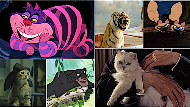Meow Mix: The 100 Most Iconic Cats in Movies