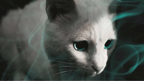 Meow Mix The 100 Most Iconic Cats In Movies Paste