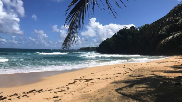 Dominica: Off the Beaten Path in the West Indies