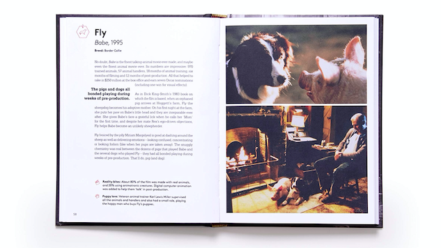 Learn Behind-the-Scenes Facts About Famous Dogs in This Excerpt from <i>Citizen Canine</i>