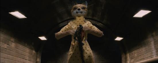 Fantastic Mr Fox updated.jpg
