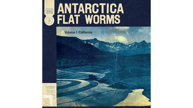 Flat Worms&#8217; <i>Antarctica</i> is a Scorched Punk Stunner