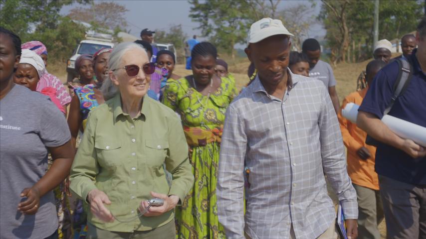 Jane Goodall on Hope, Advocacy, Coronavirus, and <i>Tiger King</i>