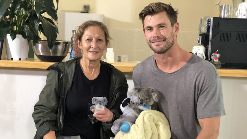 Self-Care: Watch Chris Hemsworth Feed a Baby Koala Named Dimples from NatGeo's Earth Day Special