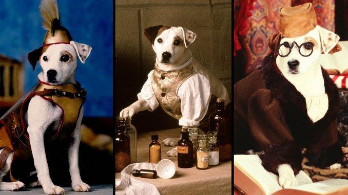 Release the Hound: <i>Wishbone</i> Creators on the Show's History&#8212;and Its Uncertain Future