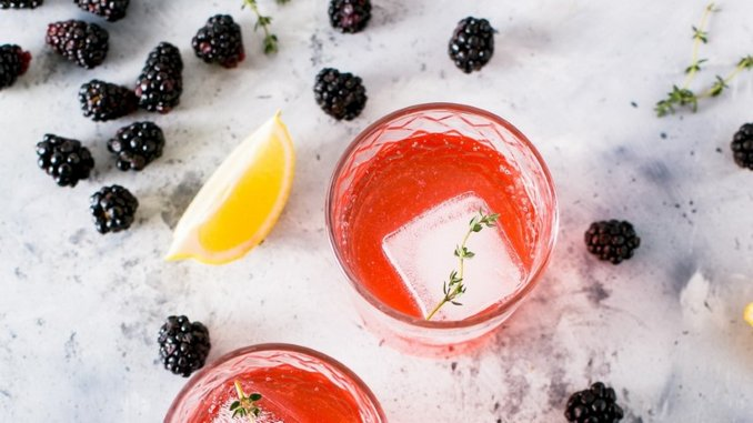 Cocktail Queries: What Is a Shrub, and How Are They Used in Cocktails?