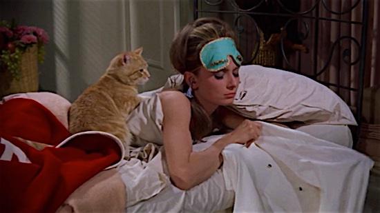 22-Breakfast-at-Tiffanys-Cat-100-Best-Cats.jpg