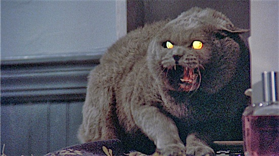 29-Pet-Sematary-Church-100-Best-Cats.jpg