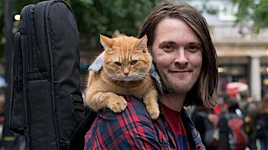 60-A-Street-Cat-Named-Bob-Bob-100-Best-Cats.jpg