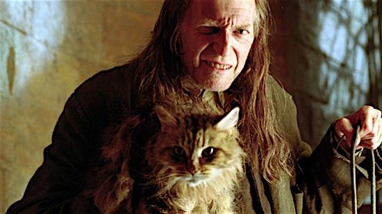 61-Harry-Potter-Mrs-Norris-100-Best-Cats.jpg