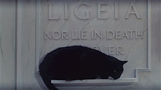 64-The-Tomb-of-Ligeia-Black-Cat-100-Best-Cats.jpg