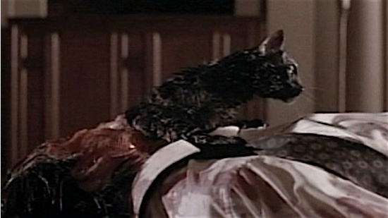 70-Tales-From-the-Darkside-The-Movie-Black-Cat-100-Best-Cats.jpg