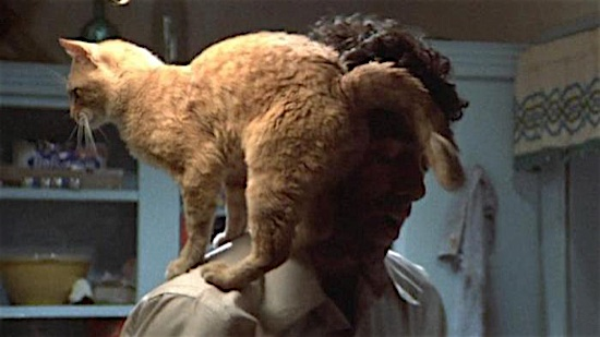 74-The-Long-Goodbye-Philip-Marlowes-Cat-100-Best-Cats.jpg