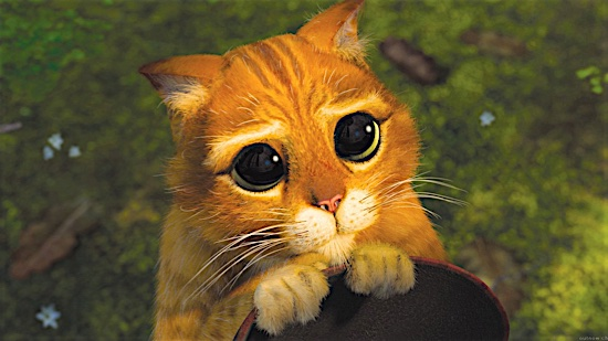 8-Shrek-2-Puss-in-Boots-100-Best-Cats.jpg