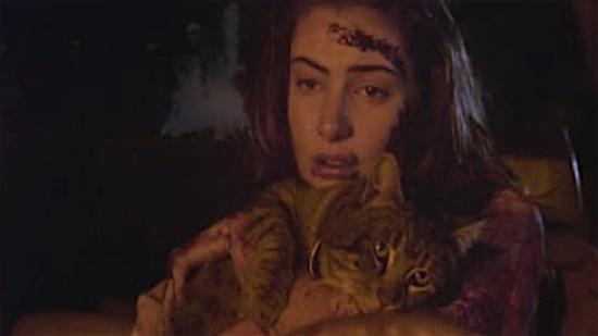 86-Sleepwalkers-Charles-and-Mary-Brady-100-Best-Cats.jpg