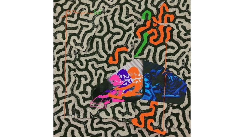 Animal Collective: <i>Tangerine Reef</i> Review