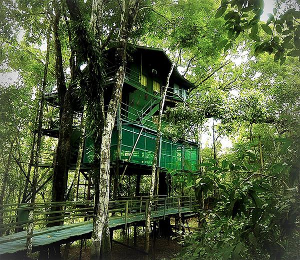 Ariau_Amazon_Towers_Hotel.jpg