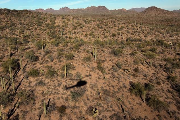 Arizonatop10.jpg