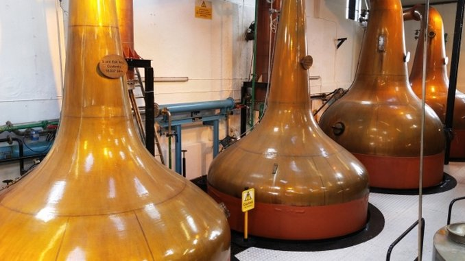Ask the Expert: How is Scotch Whisky Different From Irish Whiskey?