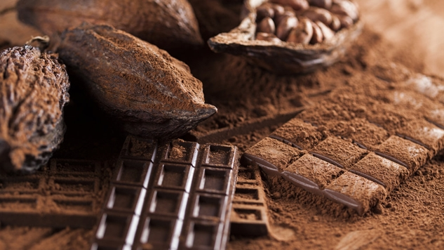 Tales from the Budding Craft Chocolate Industry