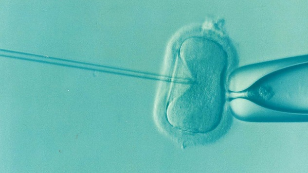 More Than One Million Babies Have Been Born With Help From Assisted Fertility Methods