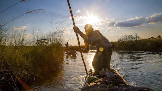 National Geographic's Stunning <i>Into the Okavango</i> Shows It's Not Too Late to Save the Planet