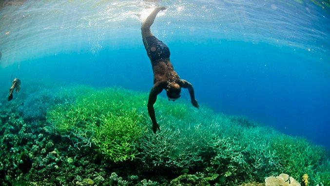 The Bucket List: 7 Reefs for Underwater Adventures