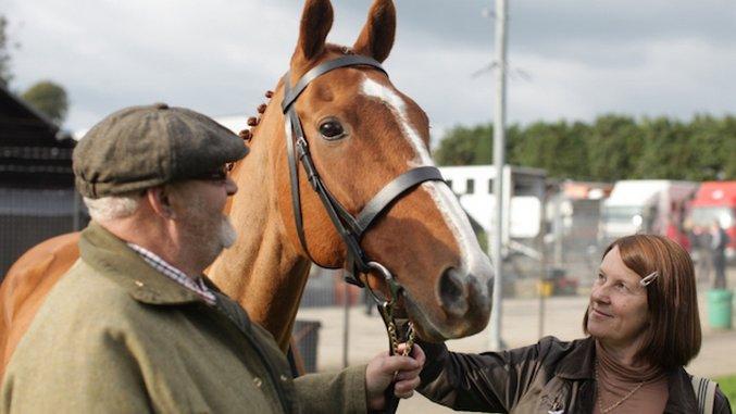 <i>Dark Horse</i>