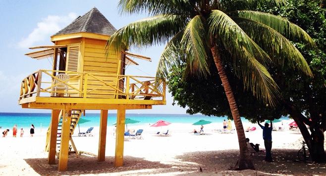 Exploring Barbados Like a Local