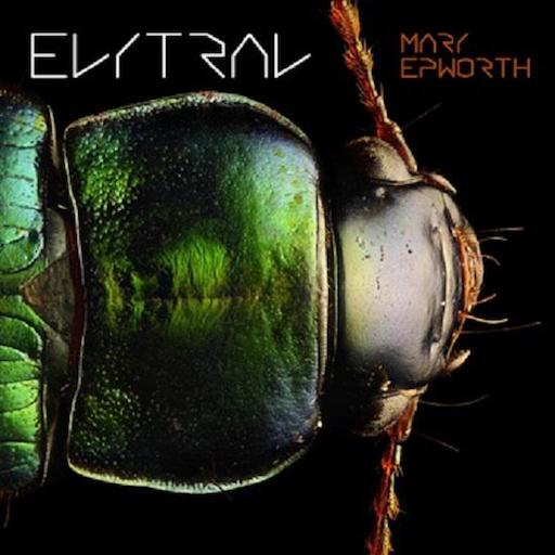 Mary Epworth: <i>Elytral</i> Review