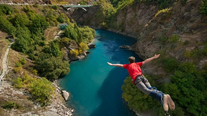 Off The Grid: The Best of New Zealand