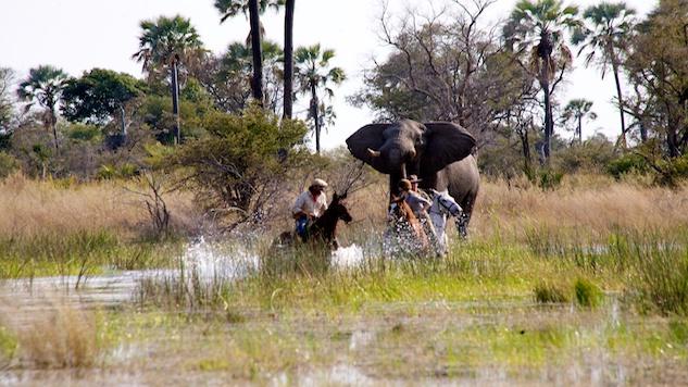 Okavango-Delta_botswana.jpg