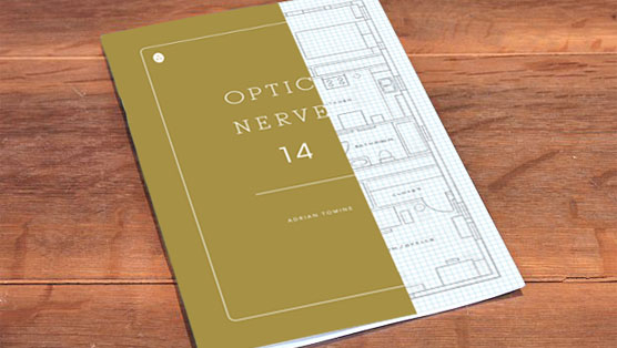 <i>Optic Nerve</i> #14 by Adrian Tomine Review