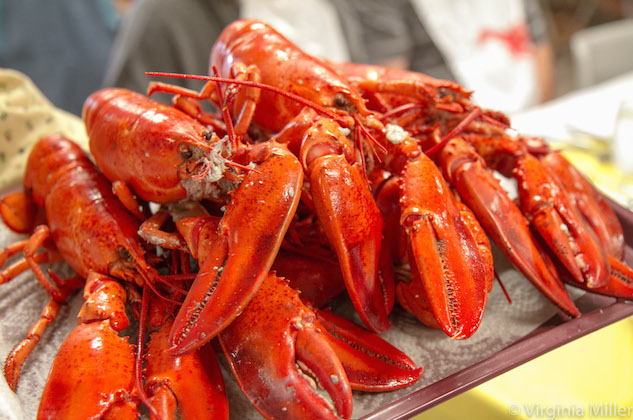 PEI Lobster-Copyright Virginia Miller.jpg