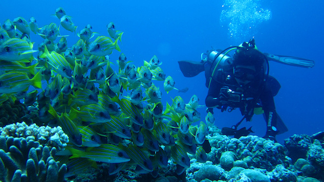 Palau Breakout Diving.jpg