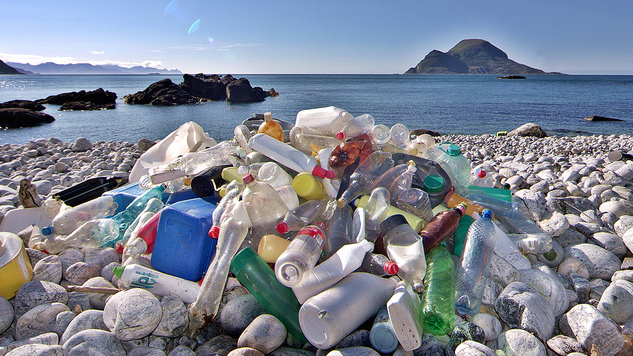 Turning Toward Plastic Waste to Build a Greener Future :: Science ...