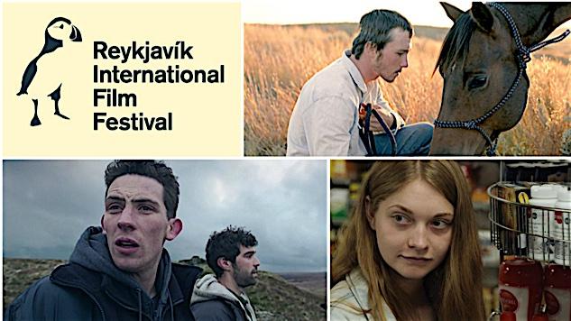 The 2017 Reykjavik International Film Festival: Yes. I Met Bjork. No, I Didn't Try the Shark.