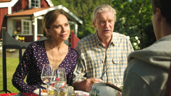 "Welcome to Sweden Review: ""Get a Job"" :: TV :: Reviews :: Sweden ..."